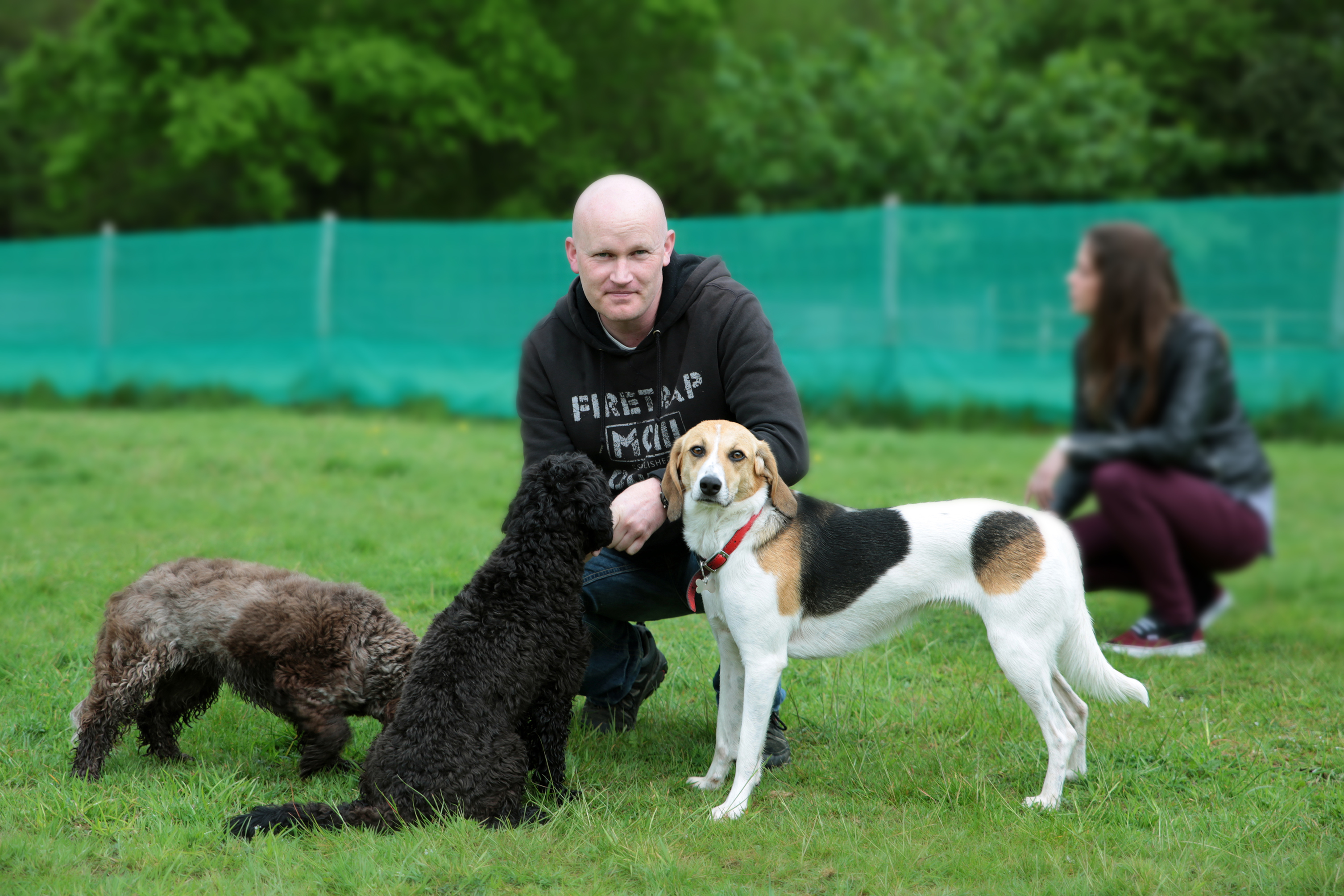 How to become a Dog Trainer/Behaviourist - half day shadowing